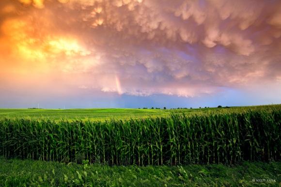Post Storm
